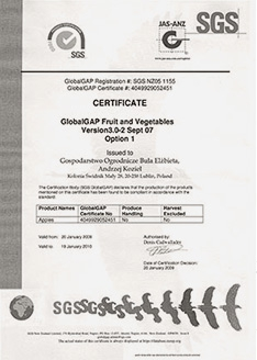 Certyfikat nr 5